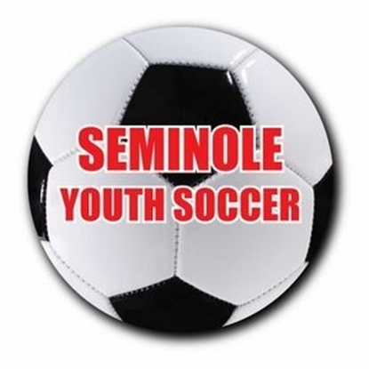 "Picture of 3"" Round Soccer Ball Car Magnets"