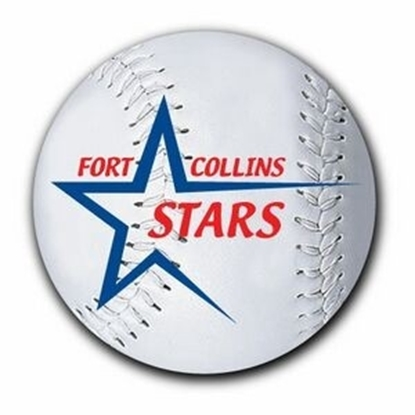 "Picture of 3"" Round Softball Car Magnets"