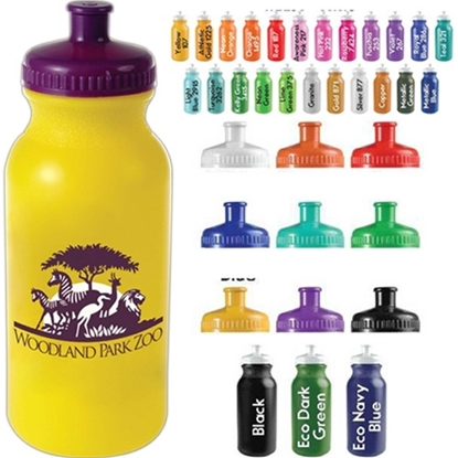 Picture of 20 oz Bike Bottle with Push Pull Cap